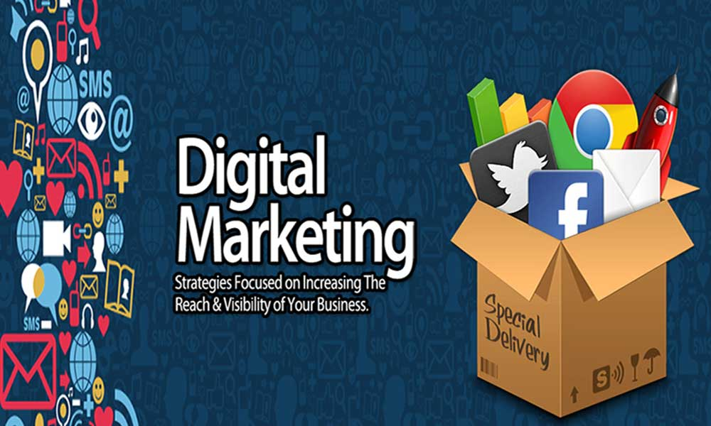 Digital Marketing Courses in Noida