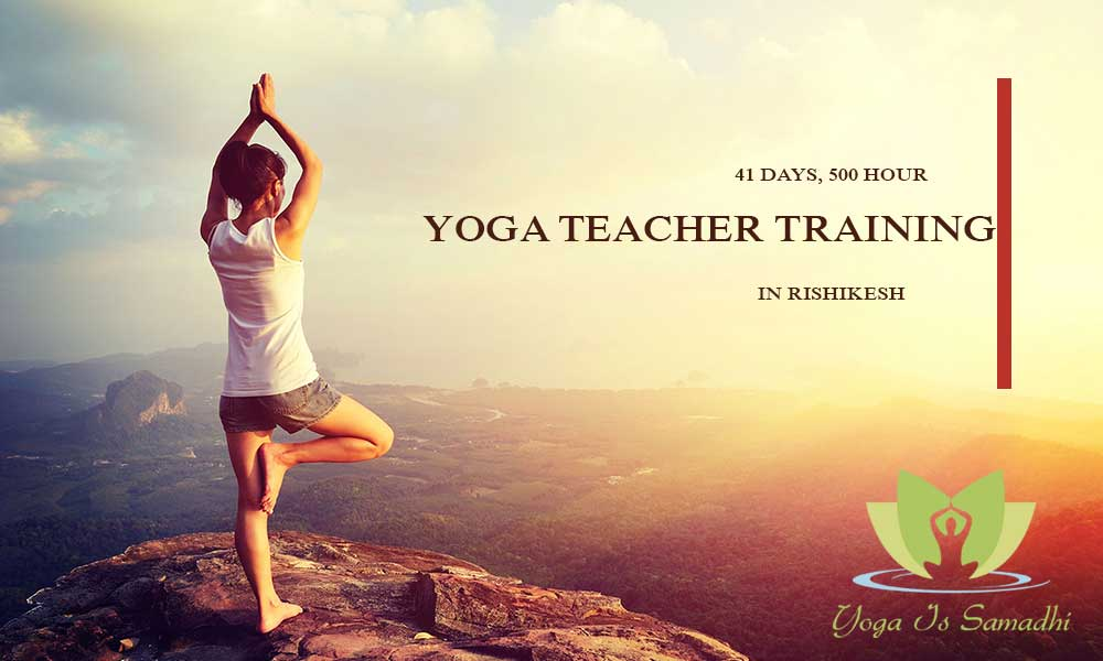 41 Days, 500 Hour Yoga Teacher Training In Rishikesh