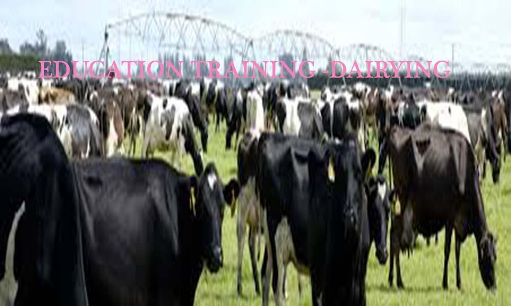 education training-dairying