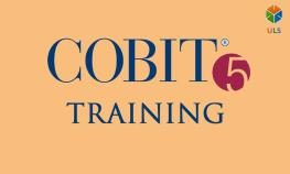 cobit5-training