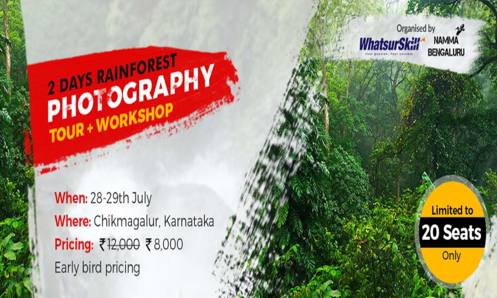 2 Days Rainforest Photography Tour and Workshop